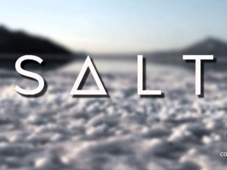 blockchain based SALT loans, easy cash loans online facility