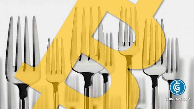 cryptocurrency forks