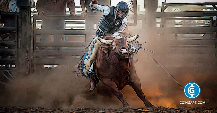 "Crypto Bull Market in Action: 3 Altcoins ""Paving their Own Bull Run"""
