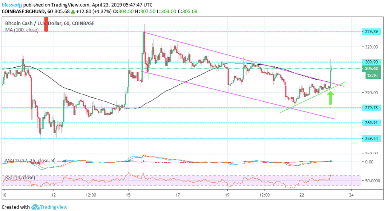 Bitcoin Cash [BCH] Price Analysis: Brief Surge Catapults BCH Above $300