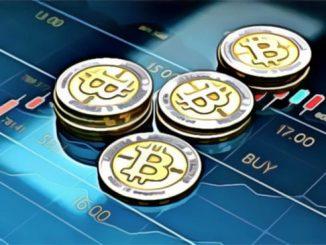 Bitcoin Traders Stoic