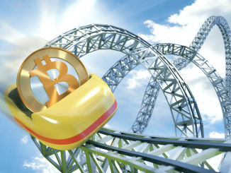 bitcoin fall or not