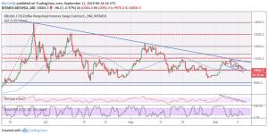 Bitcoin Price Analysis: BTC Price Hovers Above $10k