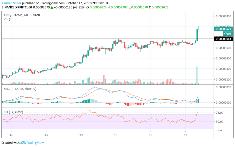 XRP/BTC one hour candle charts showing XRP's 5% increase in one hour (Source: TradingView)