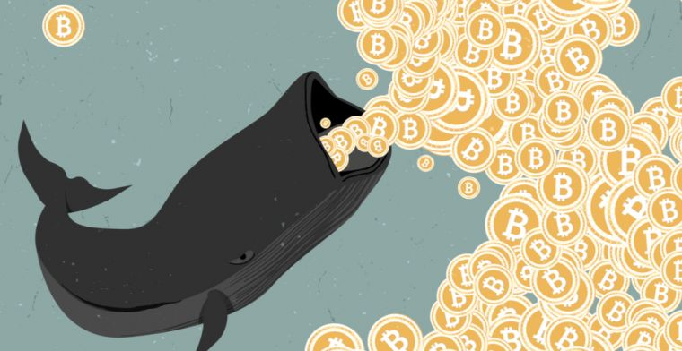 Bitcoin whale may have manipulated coin's price to spur 2017 bull run
