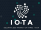 IOTA Foundation David Sonstebo