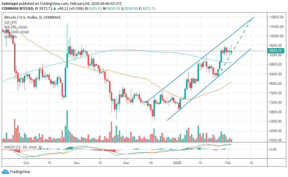BTC Chart by TradingView