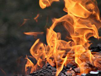 Tether USDT Coin Burning