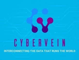 cybervein