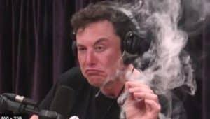 Elon musk joe rogan interview