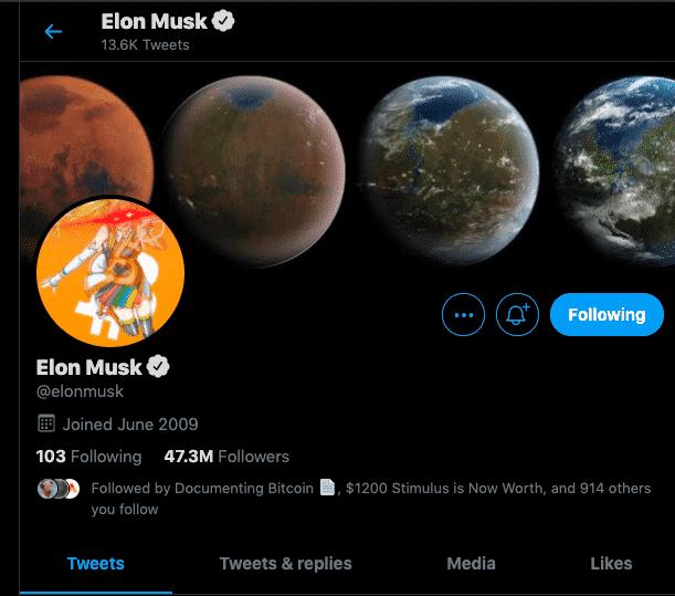 Elon Musk Bitcoin twitter Profile