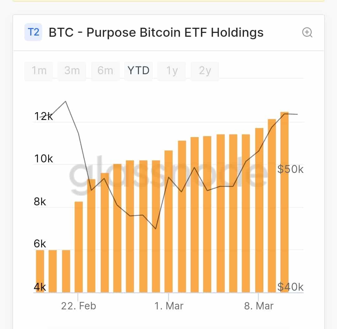 bitcoin perpus)